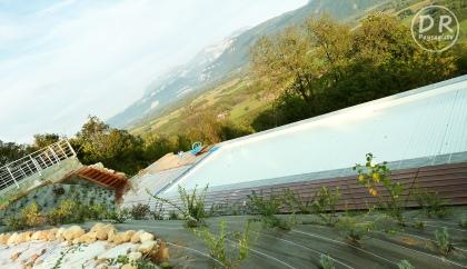 Aménagement extérieur Végétalisation piscine paysage